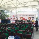 """Proyecto """"Mi Funda de Almohada"""" de la Cruz Roja y Disney"""