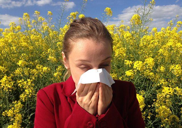 Tratamientos homeopáticos para tratar los síntomas de las alergias