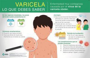 Infografía Varicela MSD