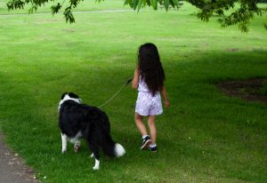 ¿Cuáles son los beneficios de tener un perro en casa?